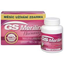 GS Merilin
