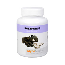 Polyporus 90